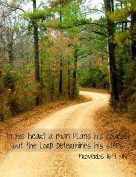 Proverbs 16_9